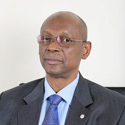 M. Ahmadou Abdoulaye DIALLO